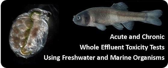 Aquatic Toxicity